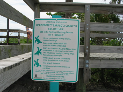 [picture: sign about nesting turtles].
