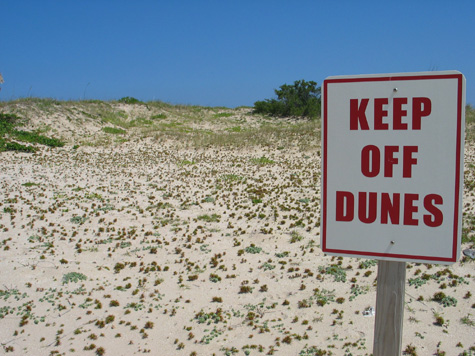 [picture: 04-keepoffdunes.jpg]