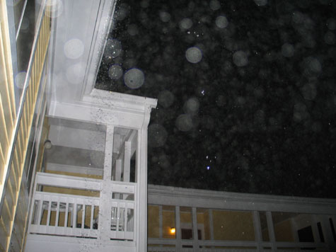 picture from on my porch, flash used.