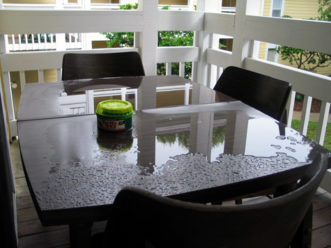 [picture: my porch table after a rainstorm]