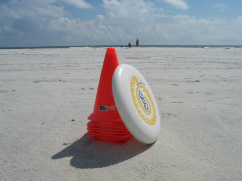 [picture: disc and cone, sk beach ulti promo]
