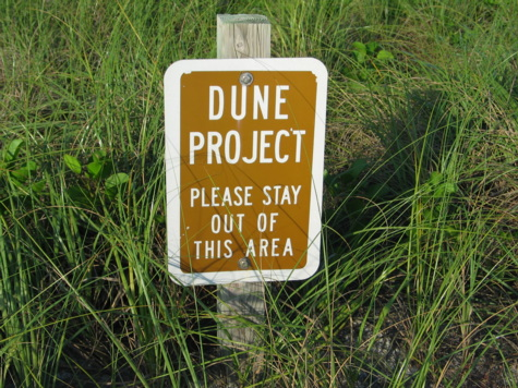 [picture: dune sign]