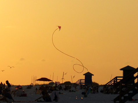 [picture:  kite on Siesta Key beach]